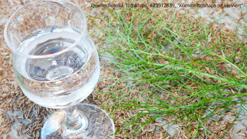 Schnaps.de Blog Aquavit