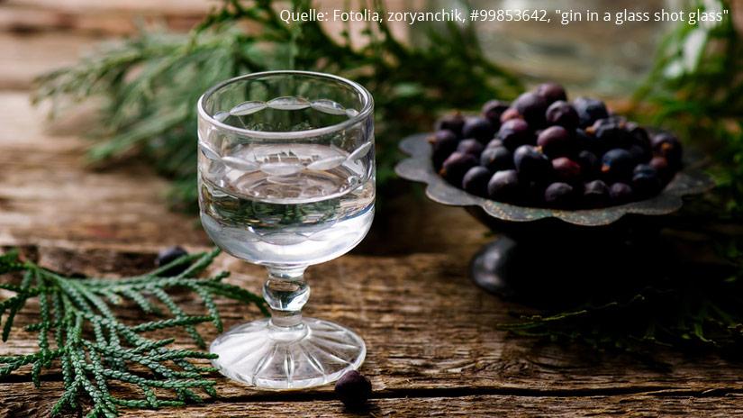 Schnaps.de - Blog - Wacholder und mehr – Gin damals und heute - Quelle: Fotolia, zoryanchik, #99853642,